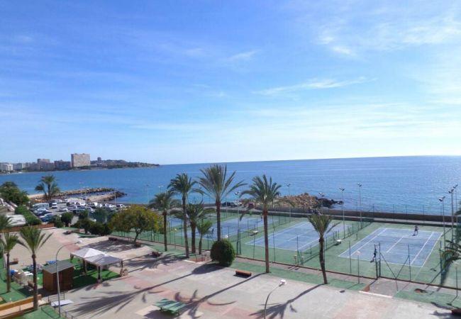 Apartamento en Alicante - APARTAMENTO SUSANA