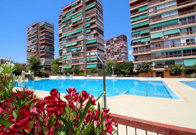 Apartamento en Alicante ciudad - APARTAMENTO LAS OLAS